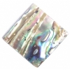 Shell Pendant With Corner Hole 25x25mm Square Abalone